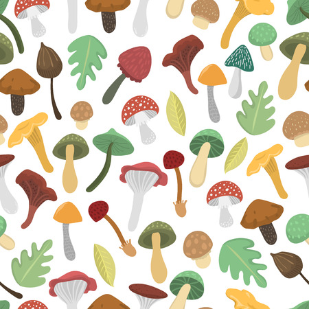 Mushrooms vector illustration seamless pattern. Different types of mushrooms isolated on white background. Nature mushrooms for cook food and poisonous mushrooms flat style