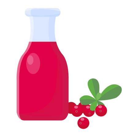 refreshment: Cranberries and cranberry juice isolated on white background. Healthy cocktail refreshment cranberry juice fruit, beverage vector illustration. Refreshing healthy cranberry juice organic vitamin. Illustration