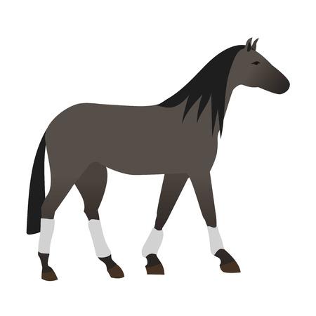 hippodrome: Ccartoon horse on white background. Cartoon horse vector illustration. Cute cartoon horse farm animals happy mane stallion character design.