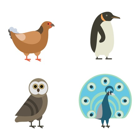 Birds vector set. Birds illustration. Egle and parrot. Pigeon and toucan. Bird collection. Penguins, flamingos. Crows and peacocks. Black grouse, chicken. Sofa and heron. Birds collection vector bird
