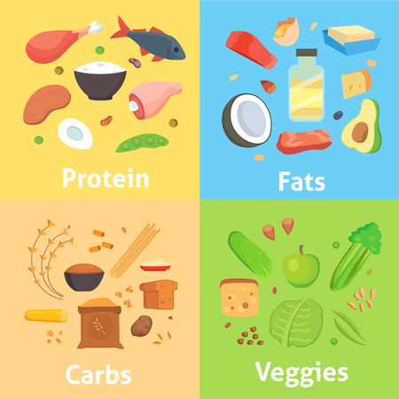 carbohydrates: Healthy nutrition, proteins fats carbohydrates balanced diet, cooking, culinary and food concept vector. Healthy nutrition proteins fats carbohydrates vegetables fruits, meat and healthy nutrition.