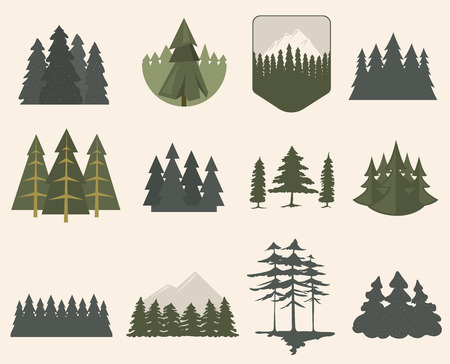 Illustration with fir trees set isolated. Pine plant wood branch natural landscape element. Trunk environment deciduous abstract vector. Big forest growth seasonal object. Banco de Imagens - 66843032