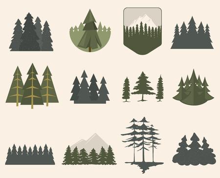 Ilustración con abetos conjunto aislado. Pino planta rama de madera elemento del paisaje natural. ambiente tronco deciduos del vector abstracto. Gran crecimiento de los bosques objeto de temporada.
