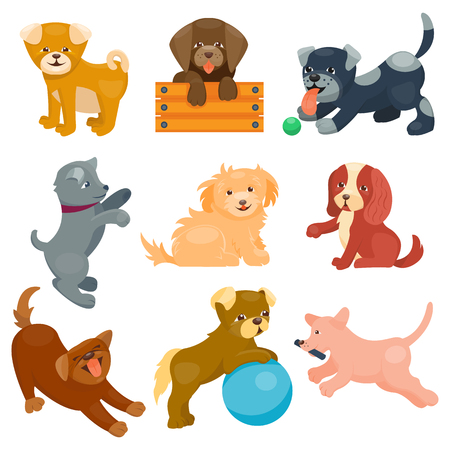 pedigree: Vector illustration cute dogs characters. Set of funny purebred puppy on white background. Comic smile happy mammal breed drawing icon. Pedigree terrier canine adorable animal.