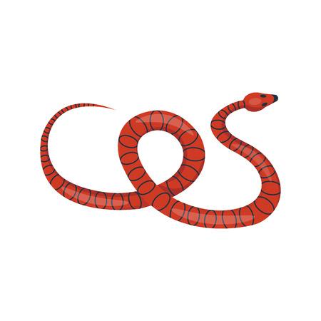 python skin: Snake reptile cartoon vector