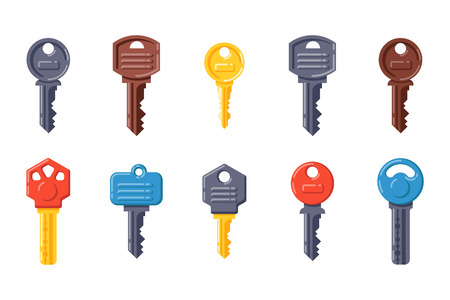 Door security key vector isolated icon.