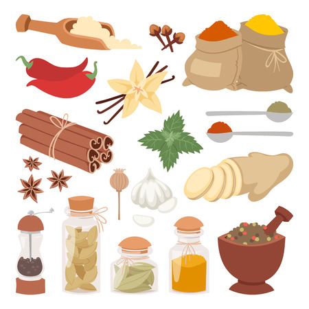 Spices, condiments and herbs decorative elements and icons. Seeds, fruit, flower buds, leaves, blends and roots of seasoning food plants. Healthy organic vegetable. Illustration
