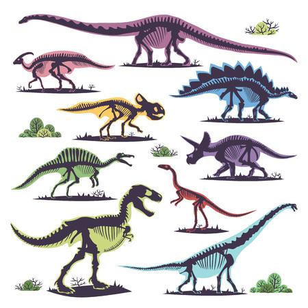 Skeletons of dinosaurs silhouettes set fossil bone tyrannosaurus prehistoric animal and jurassic monster predator dino vector flat illustration. Banque d'images