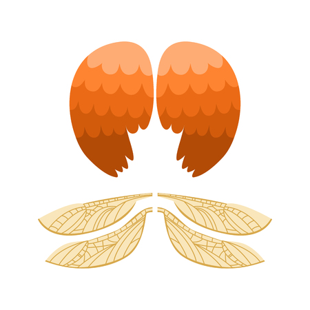 Wings isolated animal feather pinion bird freedom flight and natural hawk life peace design flying element eagle winged side shape vector illustration.