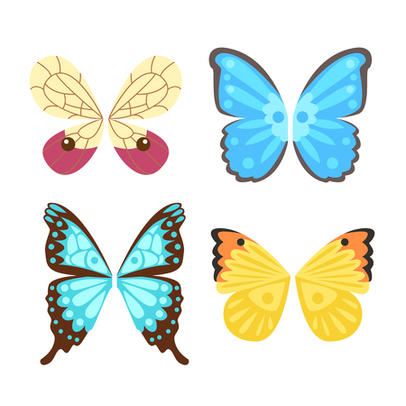 Ailes papillon isolé animal plume pignon liberté vol et faucon naturel vie paix conception élément volant aile ailé côté shapevector illustration. Illustration