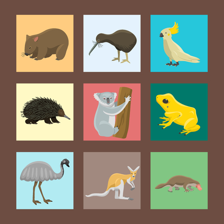 Australia wild animals cartoon popular nature characters flat style mammal collection vector illustration. Vector Illustration