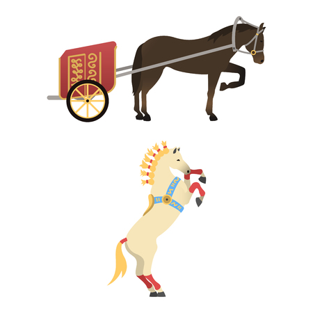 foal: Horse pony stallion isolated different breeds color farm equestrian animal characters vector illustration.