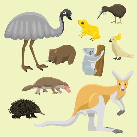 Australia animales salvajes de dibujos animados personajes de naturaleza popular de estilo plano y mamífero australiano aussie colección de bosque nativo ilustración vectorial. Pequeño retrato joven natural. Vectores