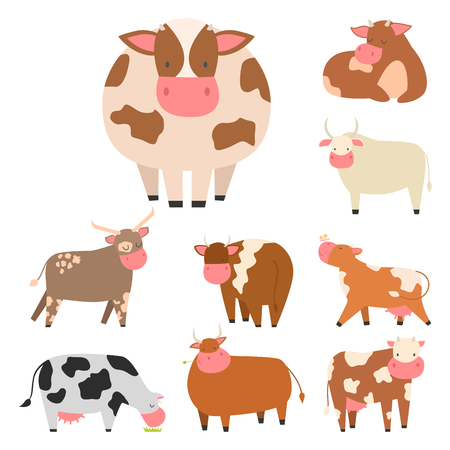 Bulls cows farm animal character vector illustration cattle mammal nature wild beef agriculture. Иллюстрация