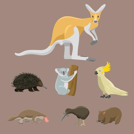 platypus: Australia wild animals cartoon popular nature characters flat style mammal collection vector illustration.