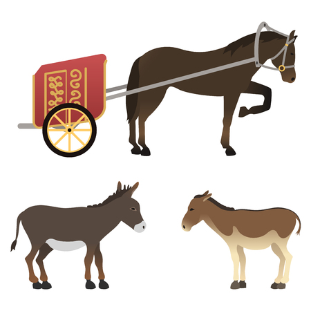razas de personas: Horse pony stallion isolated different breeds color farm equestrian animal characters vector illustration.