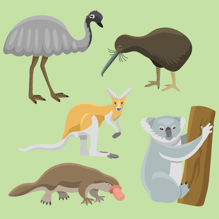 platypus: Australia wild animals cartoon popular nature characters flat style and australian mammal aussie native forest collection vector illustration. Natural little young portrait.