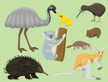 Australia animales salvajes de dibujos animados personajes de la naturaleza popular de estilo plano colección de mamíferos ilustración vectorial. Vectores