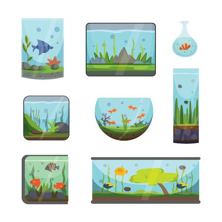 aquarian: Transparent aquarium isolated on white fish habitat aquarian house underwater tank bowl vector illustration Stock Photo