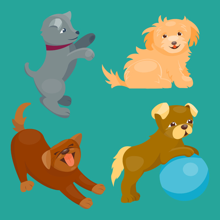dachshund: Vector illustration cute playing dogs characters funny purebred puppy comic happy mammal breed