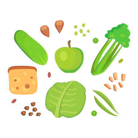 Food cellulose isolated healthy ingredient vegetable diet meal green organic veggies group nutrition health superfood vector illustration