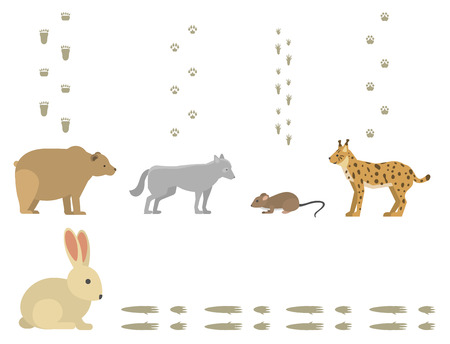 Animal footprints include mammals and birds foot print trace wildlife track steps wild nature silhouette vector Illustration