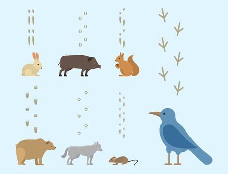 Tier Fußabdrücke gehören Säugetiere und Vögel Fuß Druck Spur Wildlife Track Schritte wilden Natur Silhouette Vektor
