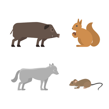 Different wild animals dangerous vertebrate canine characters large predator vector illustration. Wilderness nature mammals.