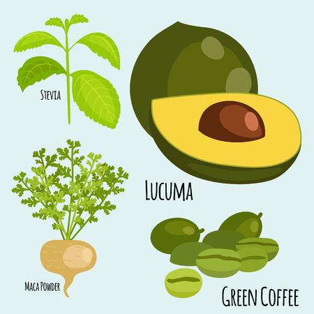 Vegetarian superfood healthy vegetable eco food fresh organic traditional gourmet nutrition vector illustration. Illustration