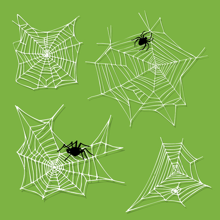 Spider web silhouette arachnid fear graphic flat scary animal design nature insect danger horror halloween vector icon.