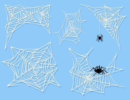 Spider web silhouette arachnid fear graphic flat scary animal poisonous design nature phobia insect danger horror tarantula halloween vector icon. Creepy warning symbol poison silhouette. Ilustrace