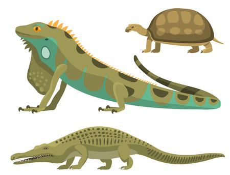 Reptiel en amfibie kleurrijke fauna vector illustratie reptiloid roofdier reptielen dieren. Stock Illustratie