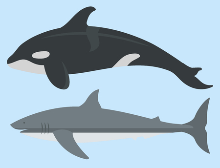 Vector set of cute sea animals creatures characters.
