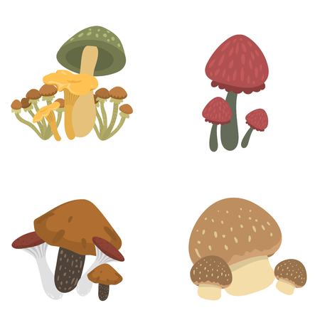 amanita: Amanita fly agaric toadstool mushrooms fungus different art style design vector illustration red hat