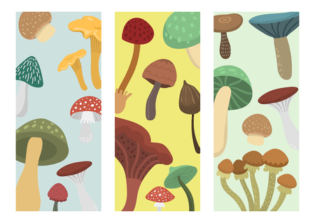 Amanita fly agaric toadstool mushrooms cards fungus different art style design vector illustration red hat