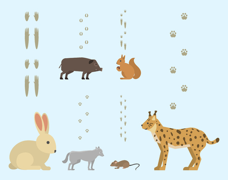 Animal footprints include mammals and birds foot print trace wildlife track steps wild nature silhouette vector. Illustration