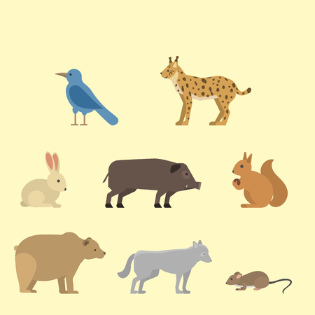 Different wild animals dangerous vertebrate canine characters large predator vector illustration.