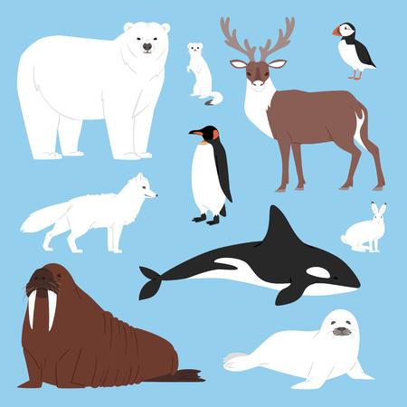 Arctic animals cartoon vector set