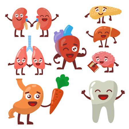 Human organs healthy and unhealthy anatomic funny cartoon character pairs vector.