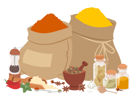 Seasoning food herbs natural healthy spices condiments organic vegetable vector ingredient. Çizim