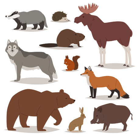 Forest animals vector cartoon animalistic characters. Illustration