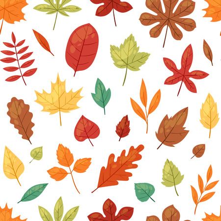 Autumn leaf vector autumnal leaves falling from fallen trees leafed oak and leafy maple or leafing foliage illustration fall of leafage set with leafage isolated seamless pattern background