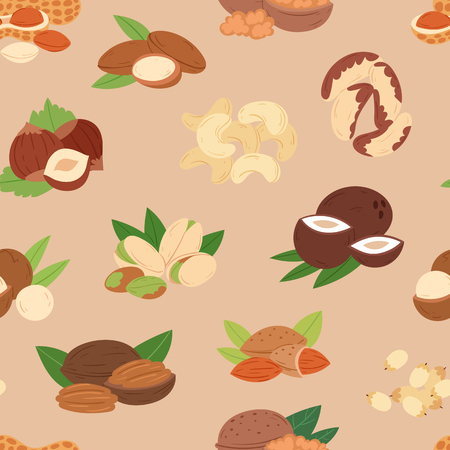 Nut vector nutshell of hazelnut or walnut and almond nuts. Set nutrition with cashew peanut and chestnuts nutmeg illustration, isolated on seamless pattern background. Illustration