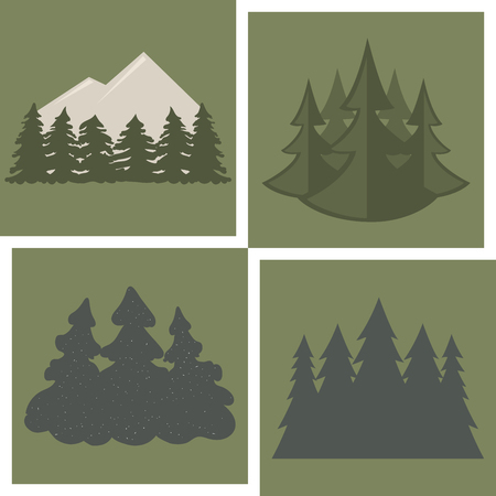 Tree outdoor travel pine silhouette, coniferous natural tops pine spruce branch, cedar plant leaf stem background.