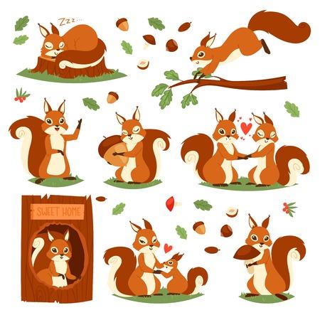 Ardilla vector lindo animal saltando o durmiendo en la vida silvestre y adorable conjunto de ilustración de pareja animal de carácter retorciéndose aislado sobre fondo blanco