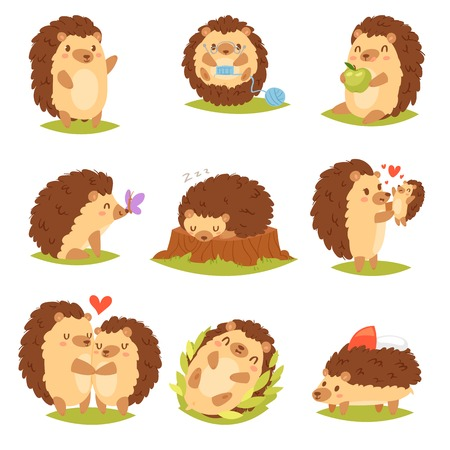 Hedgehog vector cartoon prickly animal character child with love heart in nature wildlife illustration set of hedgehog-tenrec sleeping or playing in forest isolated on white background