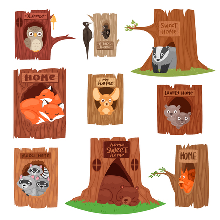 Animals in hollow vector animalistic character in tree hollowed hole illustration set of birds owl or bird on treetops and squirrel bear or fox in hollowtree isolated on white background. Stock Illustratie