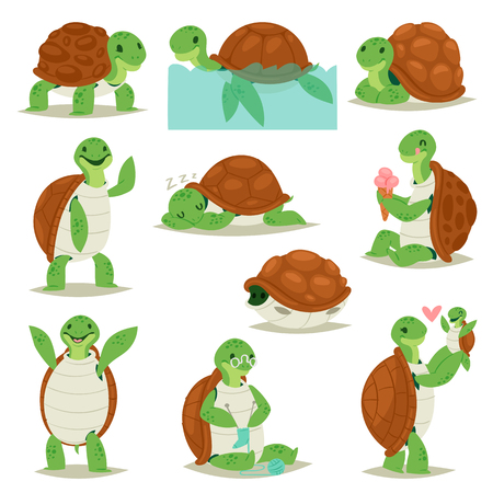 Turtle vector cartoon seaturtle character swimming in sea and sleeping tortoise in tortoise-shell illustration set of reptile hiding in turtle-shell isolated on white background