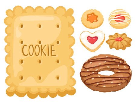 Cookie vector cakes top view sweet homemade breakfast bake food biscuit bakery cookie pastry illustration. Baked delicious chocolate tasty snack.
