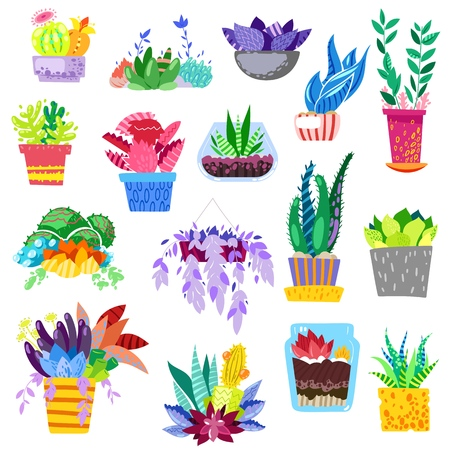 Plants in flowerpots vector potted colorful flowery houseplants for interior decoration with botanic collection floral cactuses in pots and color flowers illustration isolated on white background. 向量圖像